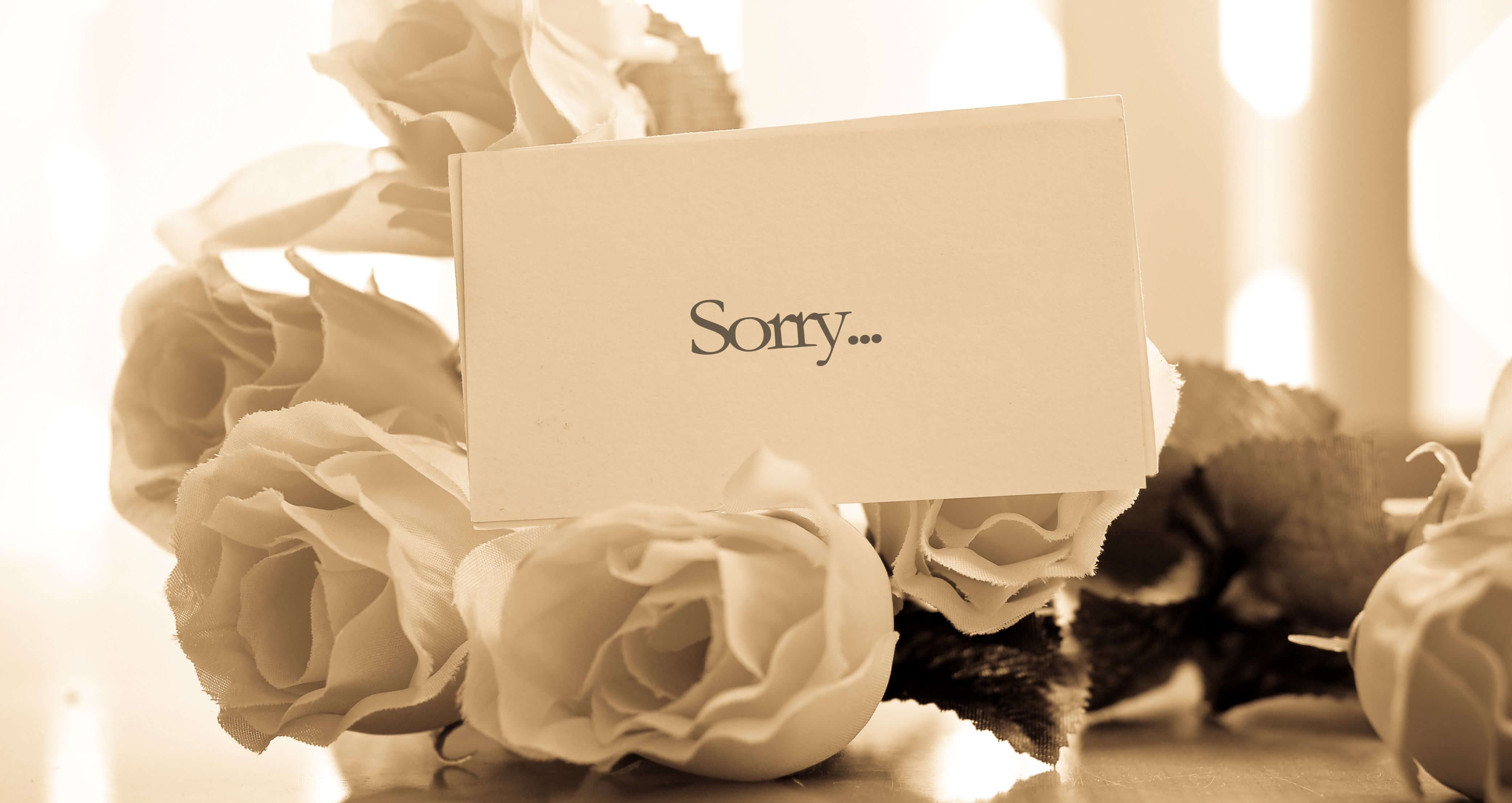 "Picture of white flowers and a card with the ""sorry"" printed on it"